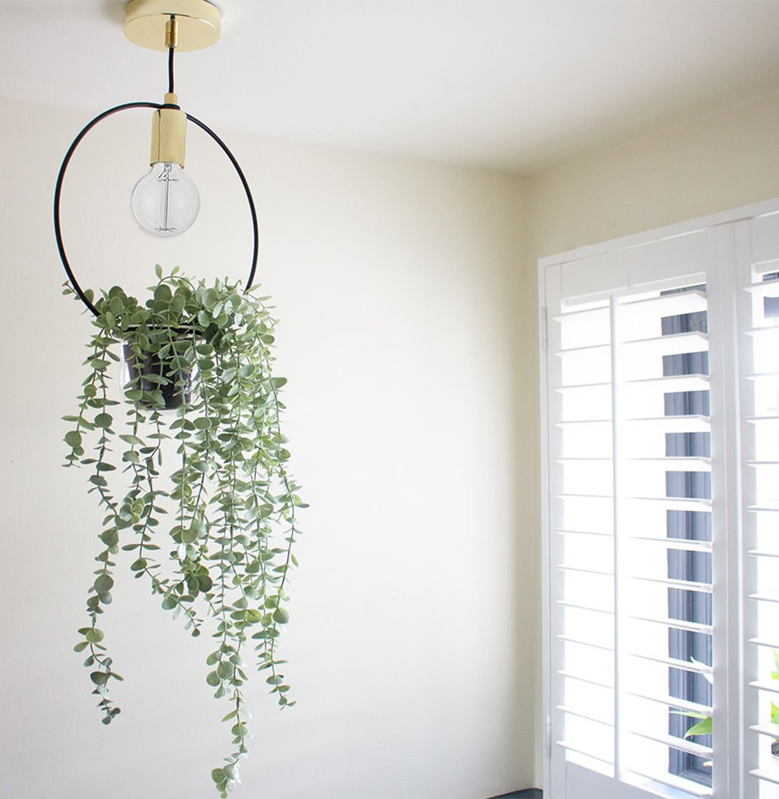 A photo of the hanging planter light fitting in the downstairs loo.